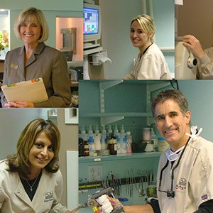 A collage of photos of dentists at work